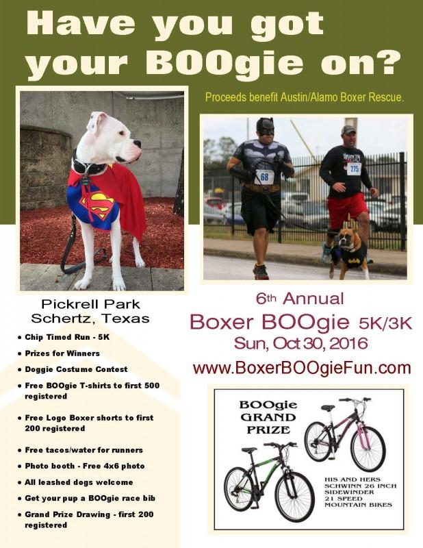 2016 Boxer Boogie 0035