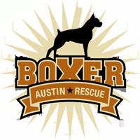 Austin Boxer Rescue