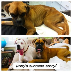Roby Before and After