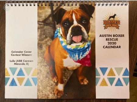 ABR Boxer Calendar 2020